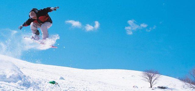Niigata Ski Packages