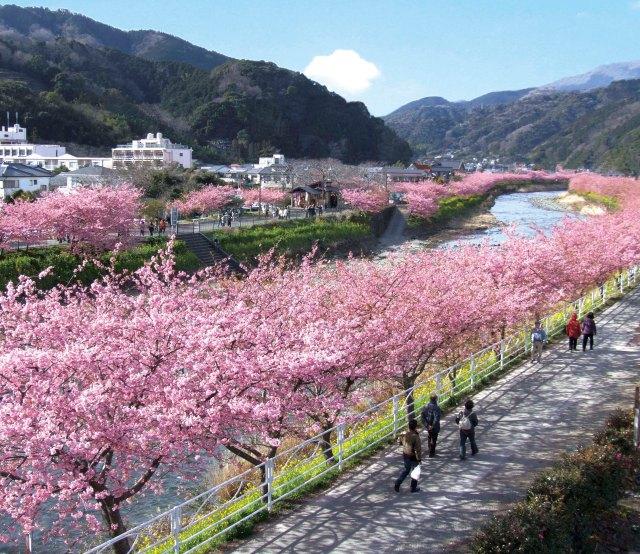 Kawazu Town